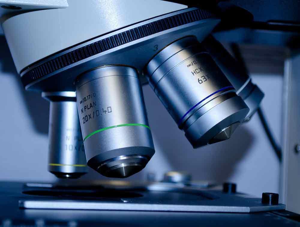 Factores que influyen en los avances de la Reproducción Asistida
